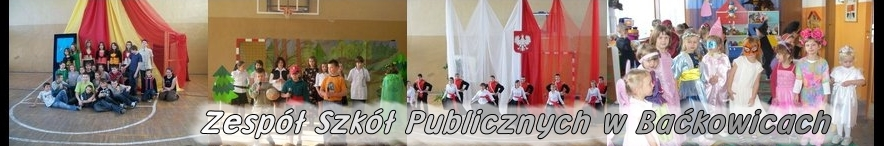 Zespół szkół w Baćkowicach